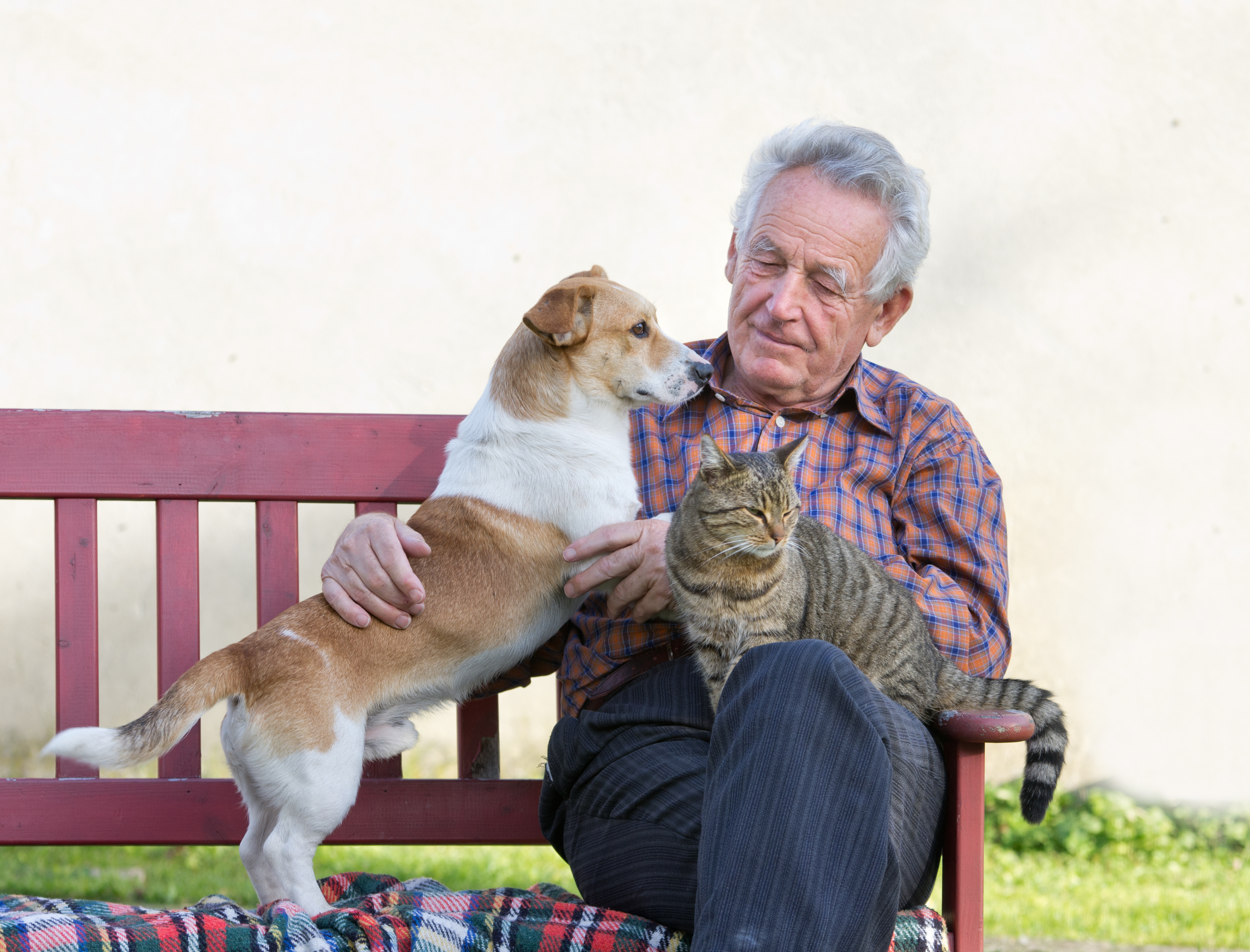 Great Benefits of Owning a Pet in Retirement